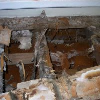 The scale of the Dry Rot outbreak becomes evident upon opening up of the floor